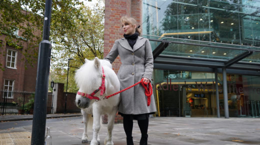 Maxine Meets… Peregrine the Pony